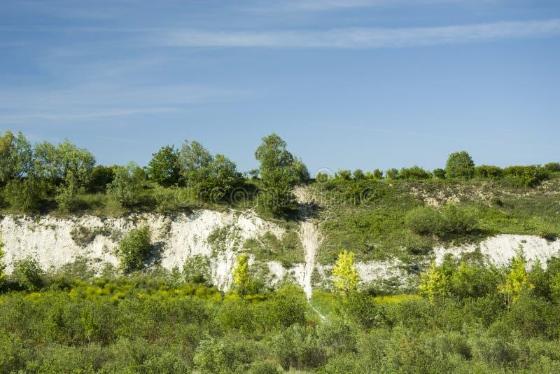 绿色白垩树、倾斜和蓝天 免版税库存照片