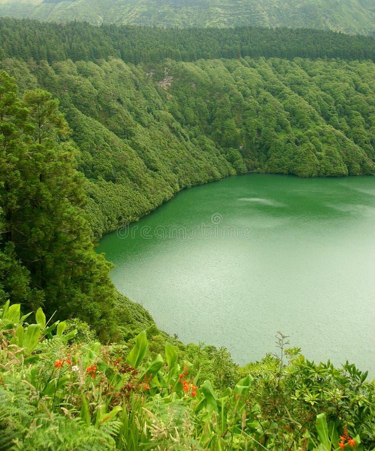 绿色盐水湖 免版税图库摄影