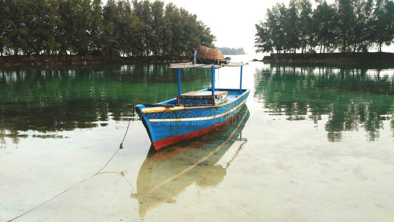 绿色盐水湖 库存图片