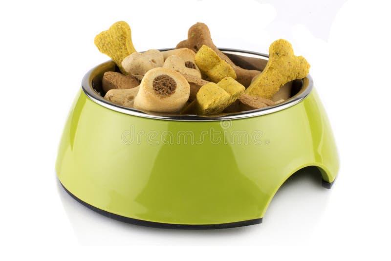 绿色碗异丁烯酸食物对待狗或猫的容器与食物 r 免版税库存照片