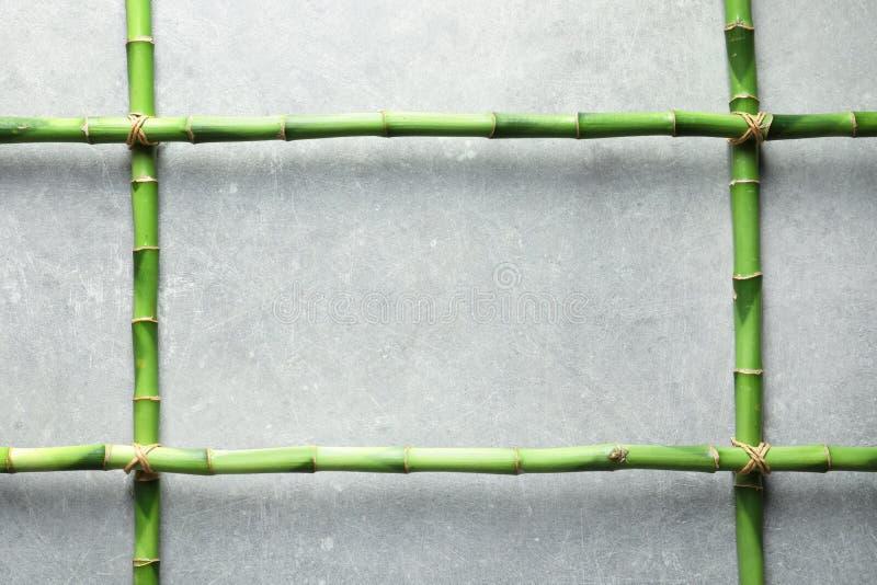 绿色竹词根和空间文本的在灰色背景 库存照片