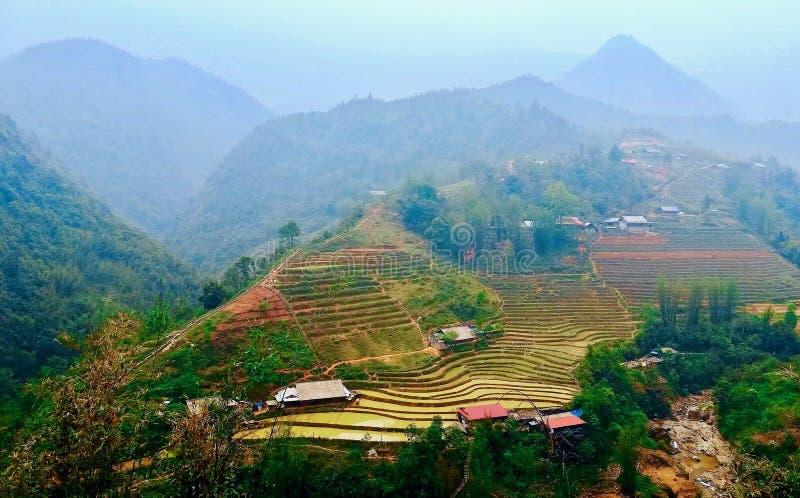 绿色米大阳台SaPa越南 免版税库存图片