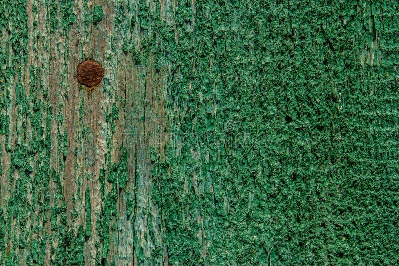 绿色纹理木头 抽象背景 免版税库存图片