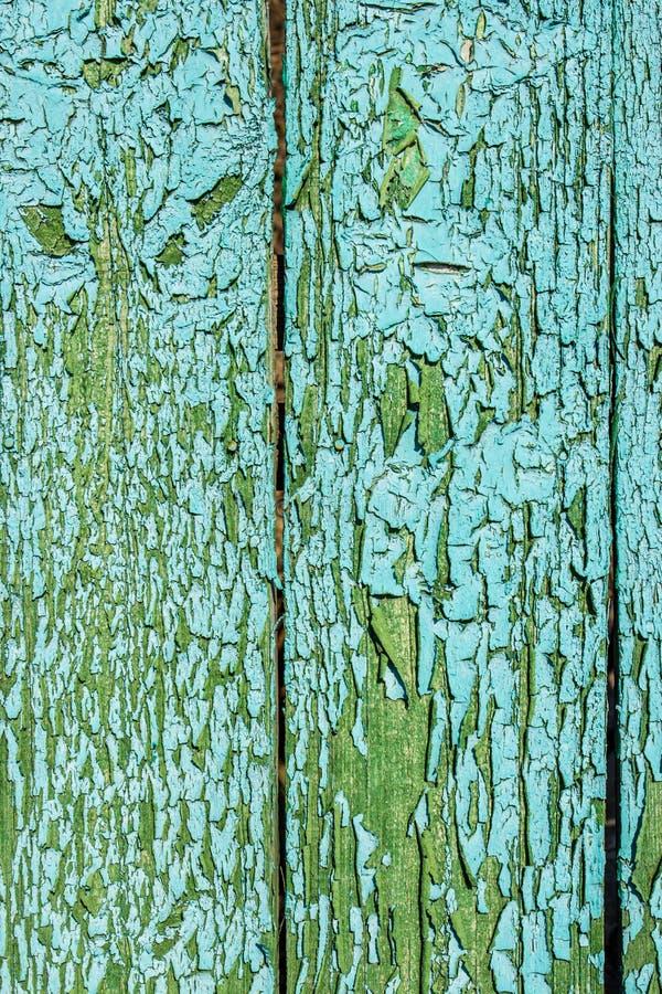 绿色纹理木头 抽象背景 库存图片