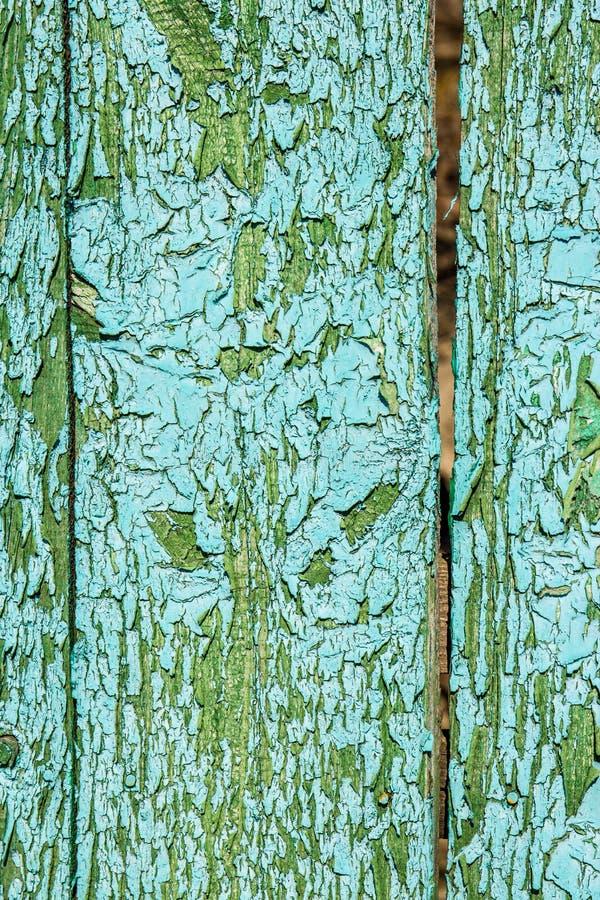 绿色纹理木头 抽象背景 免版税图库摄影