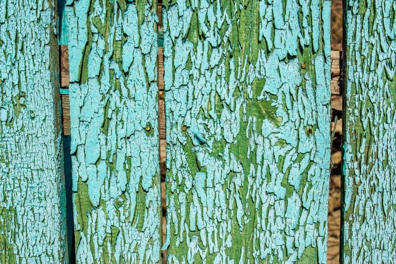绿色纹理木头 抽象背景 图库摄影