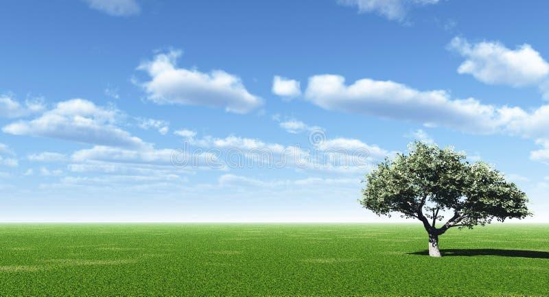 绿色结构树 皇族释放例证