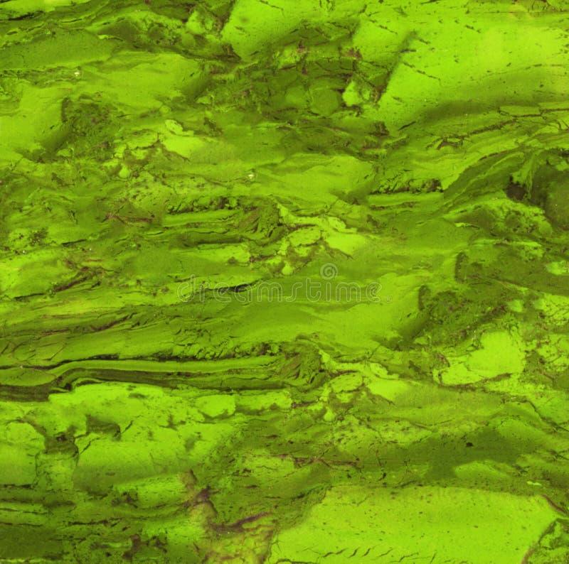 绿色绿沸铜石头特写镜头  免版税库存图片