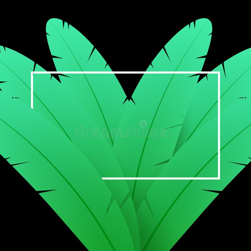 绿色羽毛背景 与白色框架的抽象构成 向量例证