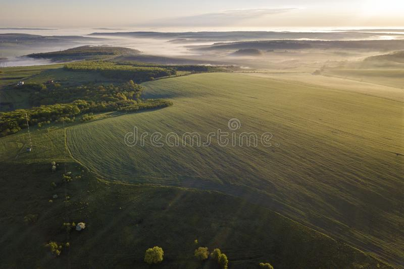 绿色耕种的小山和绿色树顶视图在有雾的谷 春天有薄雾的风景全景在黎明 免版税图库摄影