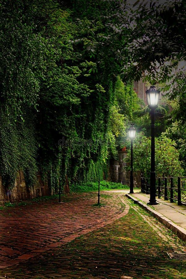 绿色胡同在城市 免版税库存图片