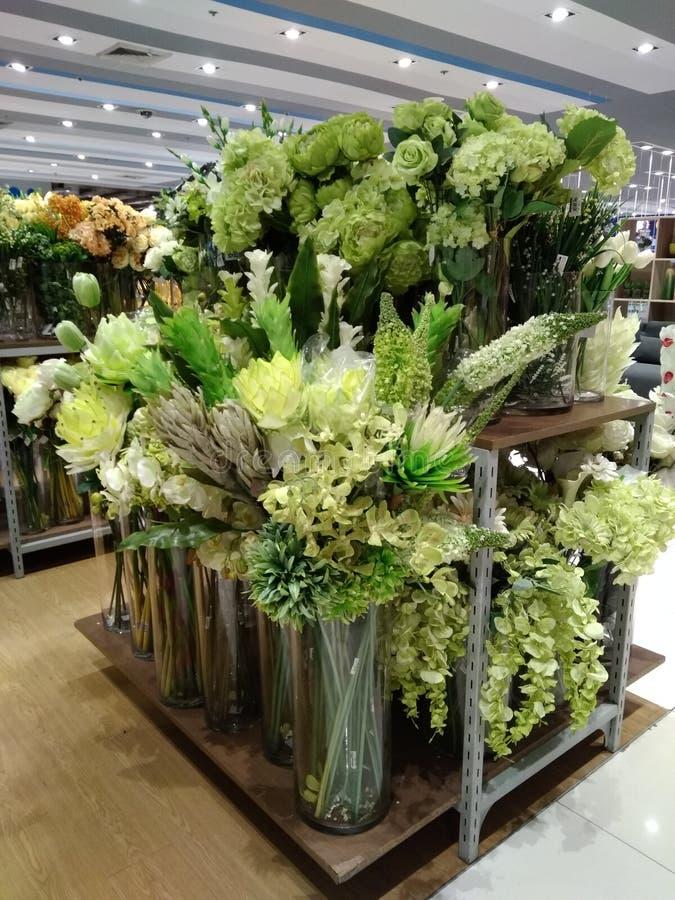 绿色花或植物室内装璜的 库存照片