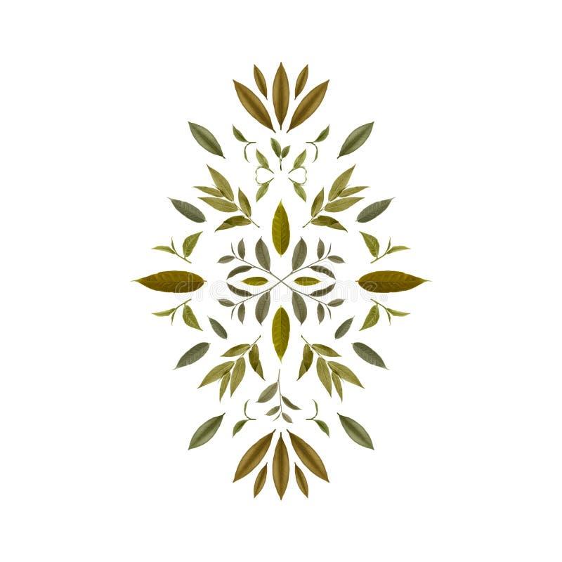 绿色茶叶拼贴画  茶背景5 皇族释放例证