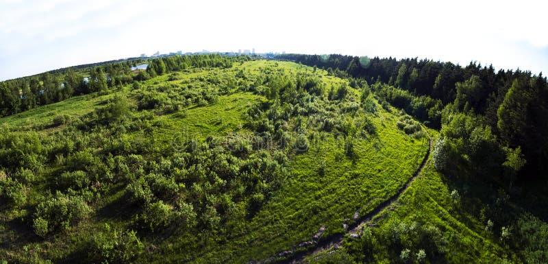 绿色草坪小的树草 安置楼房建筑的砍伐森林 自然环境顶视图从上面 免版税图库摄影