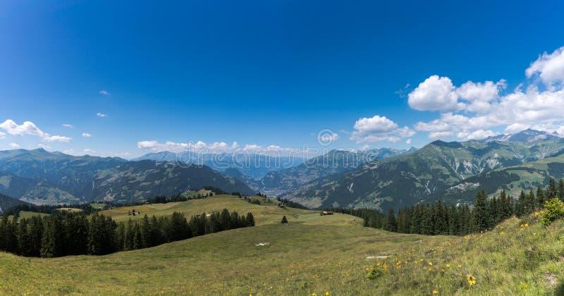 绿色草甸和伟大的山在克洛斯特斯上的瑞士使看法环境美化 免版税库存照片