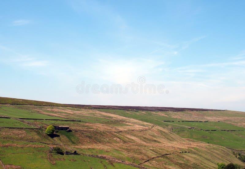 绿色草甸和石墙在小山下和荒野风景看法在老howarth路在很好pecket附近 免版税库存照片