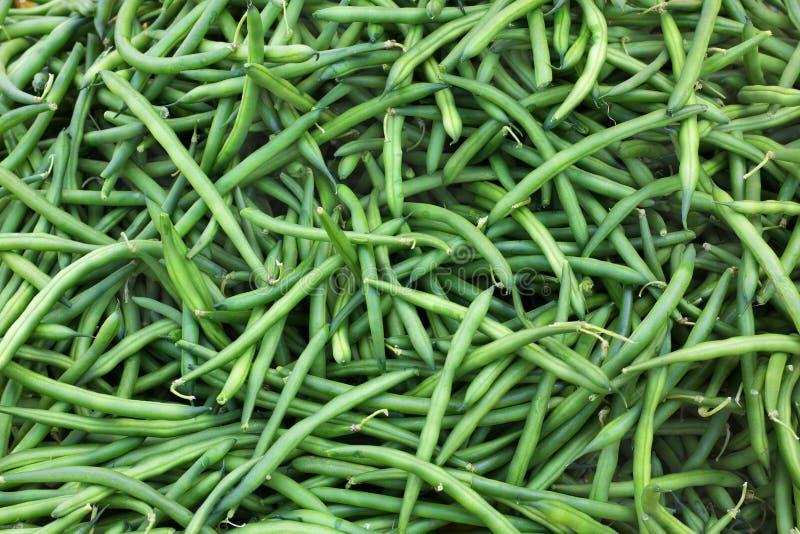 绿色菜豆 免版税库存图片