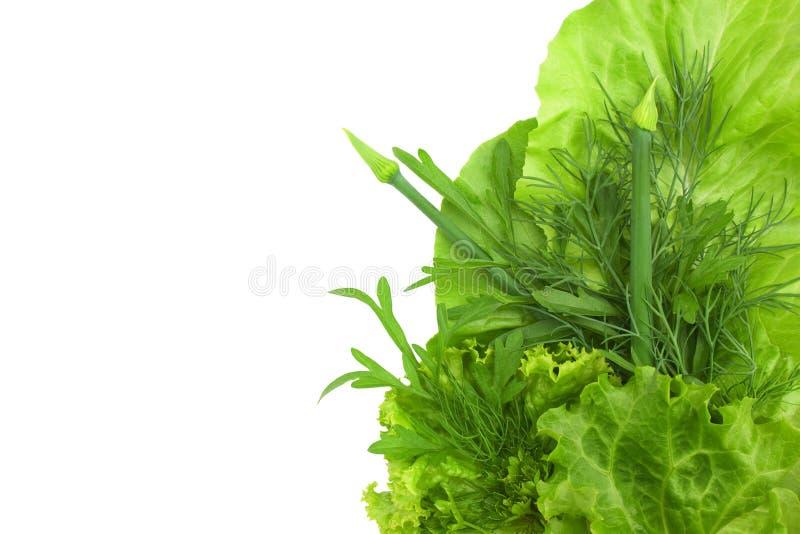 绿色蔬菜在空白背景查出 免版税库存图片