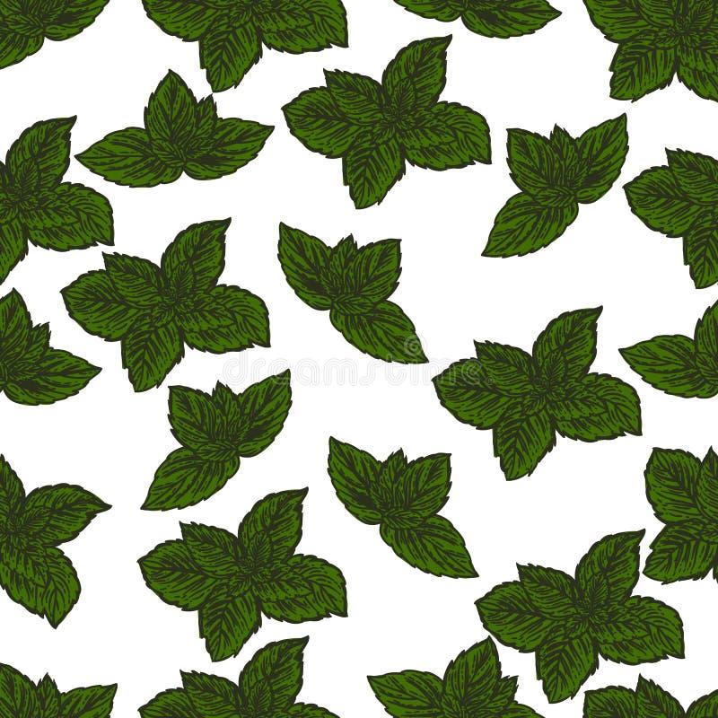 绿色薄荷叶的手拉的无缝的样式 向量例证