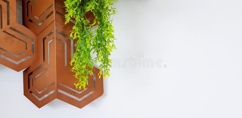 绿色藤、爬行物或者叶子有现代棕色不锈钢或铜对象的装饰的家的 免版税库存图片