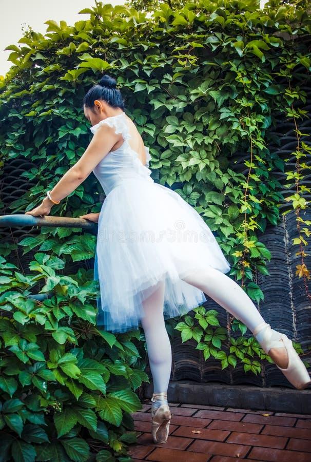 绿色藤,实践芭蕾的女演员 库存照片