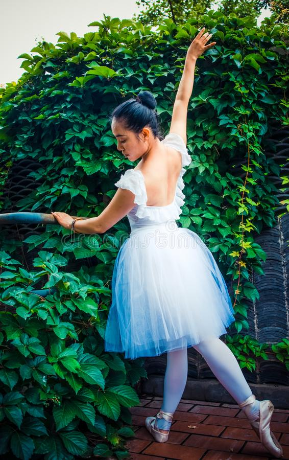 绿色藤,实践芭蕾的女演员 免版税库存照片