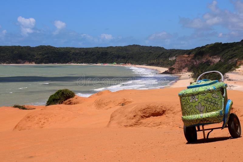 绿色装饰的致冷机在巴西 库存照片