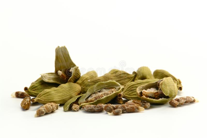绿色豆蔻果实香料 图库摄影