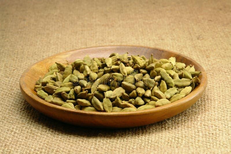 绿色豆蔻果实香料 库存照片