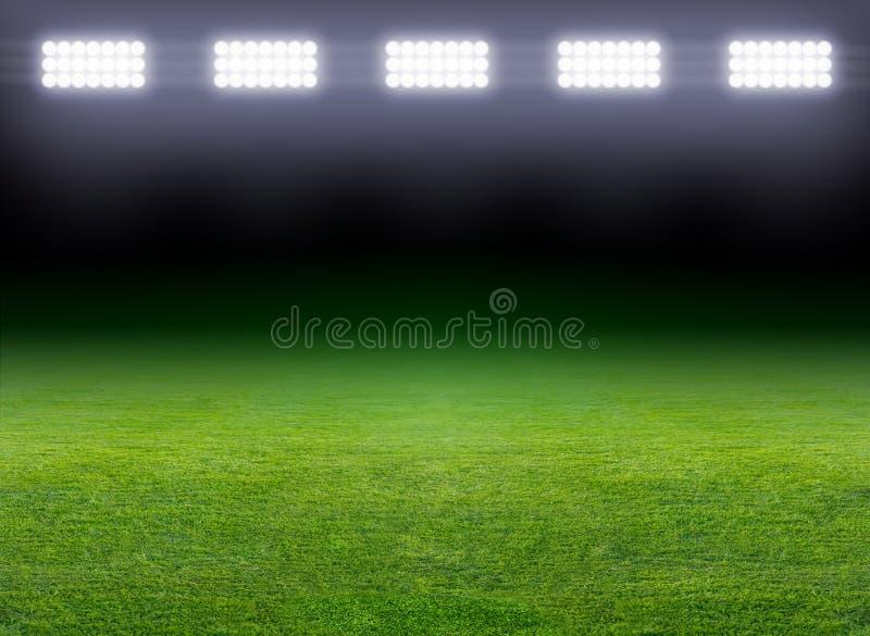 绿色足球场 库存图片