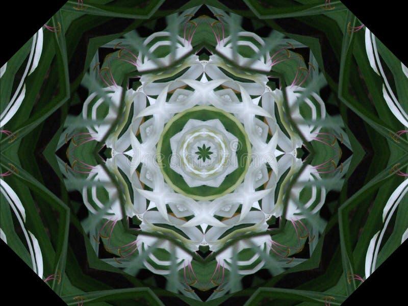 绿色轮转焰火白色 库存例证