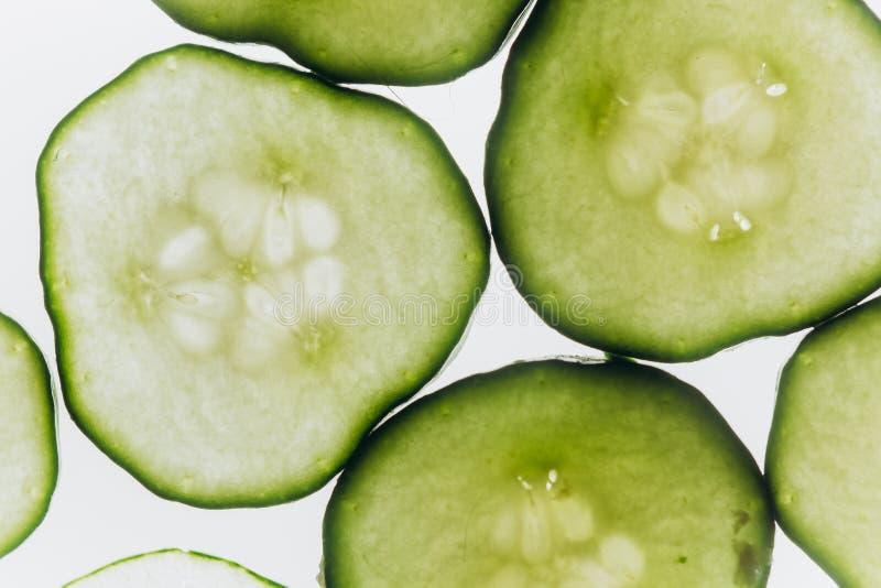 绿色透亮切片在明亮的白光特写镜头背景的黄瓜  菜透明圆盘  ??  免版税图库摄影