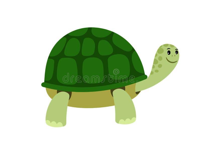 绿色逗人喜爱的乌龟动画片象 向量例证