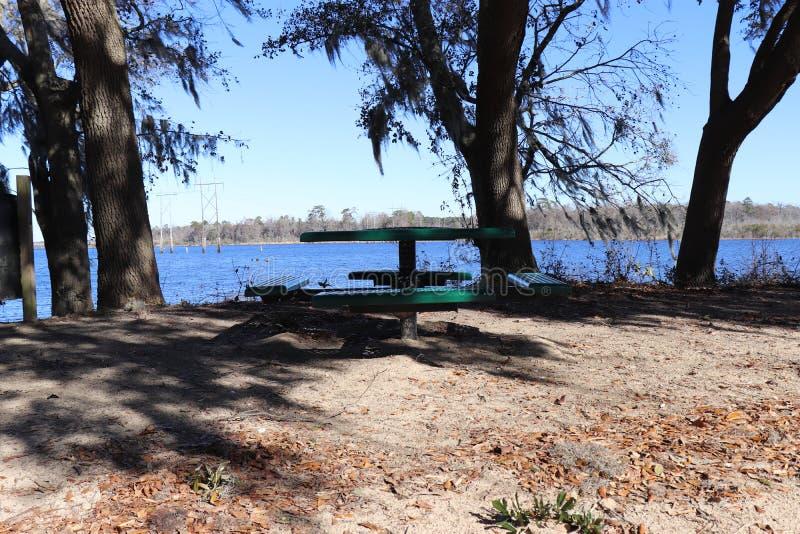 绿色野餐桌在水附近的公园 图库摄影