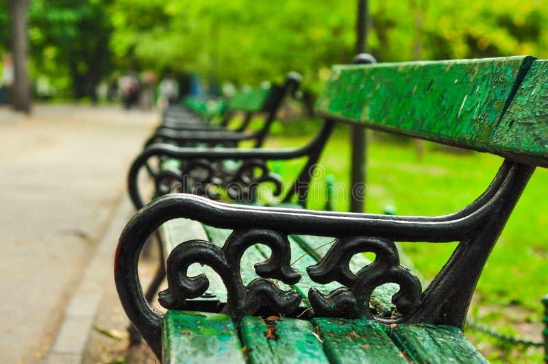 绿色长凳在城市公园 免版税库存照片