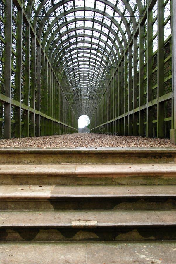 绿色隧道 免版税库存图片