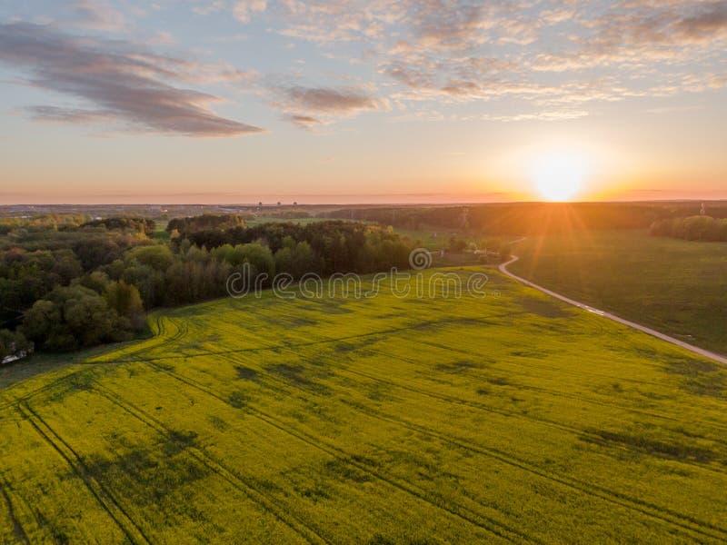 绿色领域和美好的日落 图库摄影