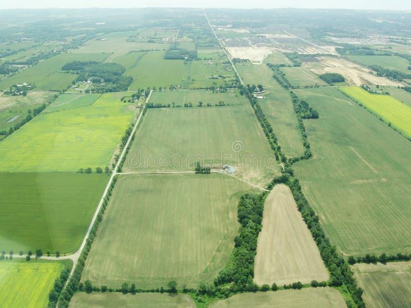 绿色领域鸟瞰图在安大略的 免版税库存照片