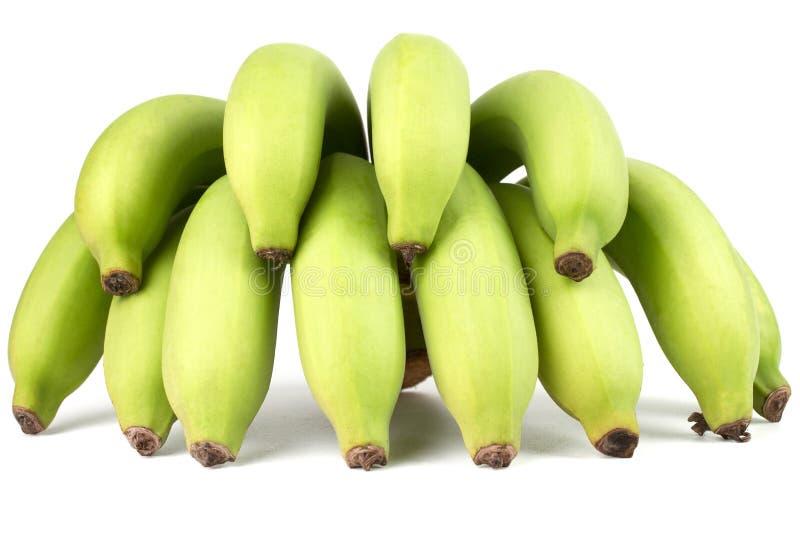 绿色香蕉Comp 免版税库存照片