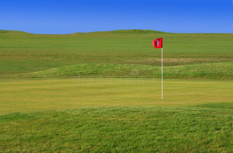 绿色高尔夫球现场 免版税库存照片