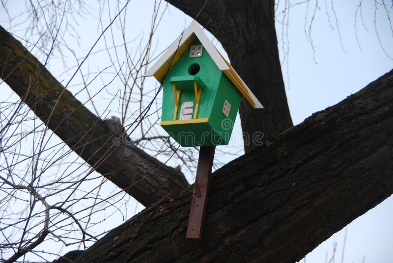 绿色鸟舍 符拉迪沃斯托克 俄国 免版税库存照片