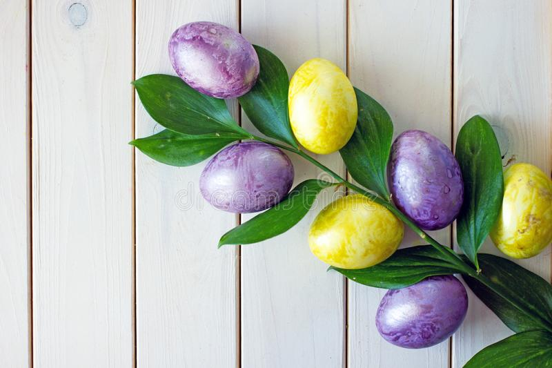 绿色黄色和紫色和绿色分支复活节彩蛋与大叶子的 免版税图库摄影
