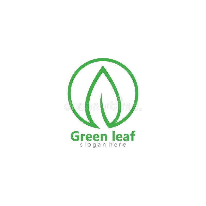 绿色eco叶子商标传染媒介象例证 库存例证