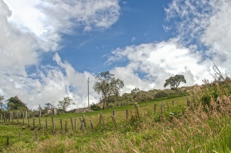 绿色Lanscape和天空 免版税库存图片