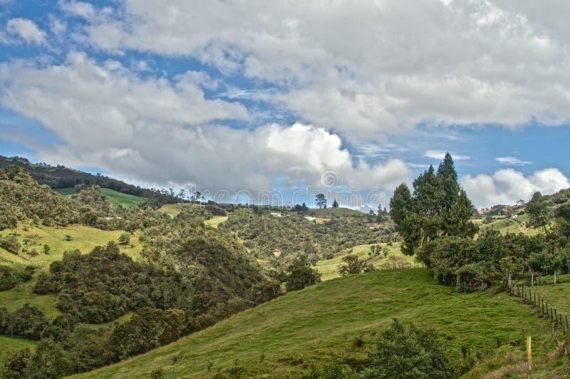 绿色Lanscape和天空 库存照片