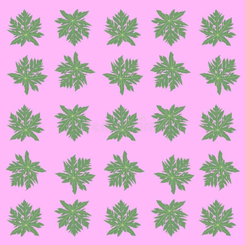 绿色markisa叶子亚洲人果子传染媒介  库存照片