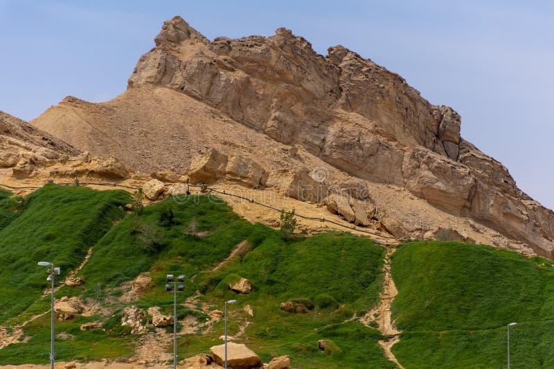 绿色Mubazzarah公园在艾因,阿拉伯联合酋长国 免版税库存图片