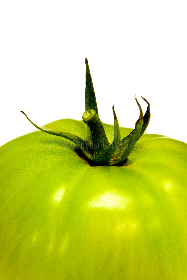 绿色tomatoe 库存照片