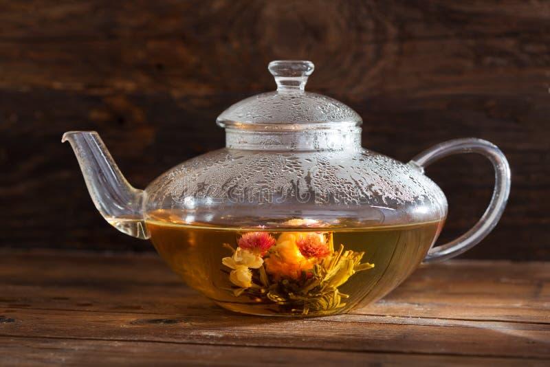 绿茶 在玻璃茶壶的开花的花 免版税库存照片