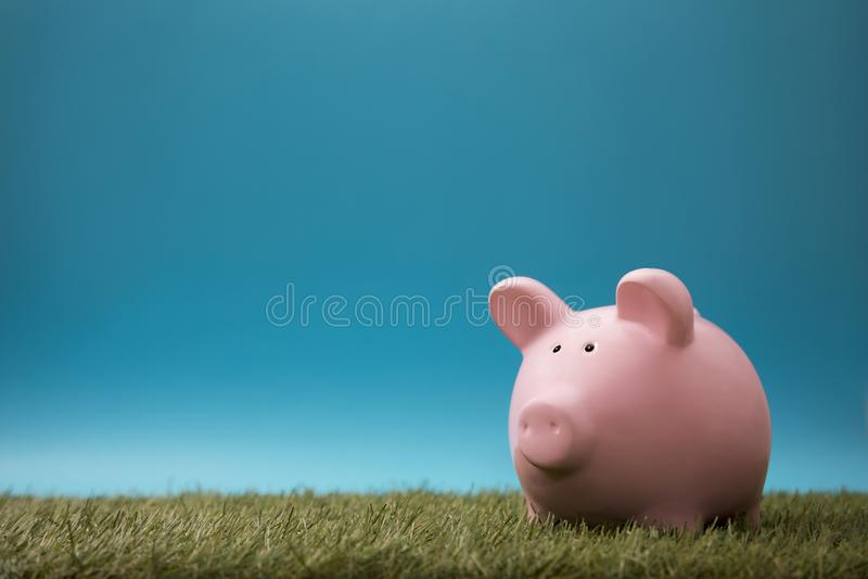 绿草和天空蔚蓝的存钱罐 库存图片